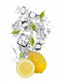 Falling pieces of lemons in water splash and ice cubes, isolated on white background