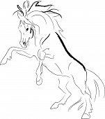 Stallion rears. vector