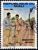 MALI - CIRCA 1984: A stamp printed in Mali dedicated to rural agriculture circa 1984