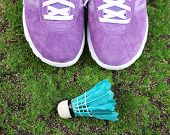 image of shuttlecock  - Beautiful gumshoes and shuttlecocks on green grass on bright background - JPG