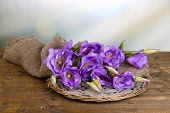 stock photo of sackcloth  - Purple artificial eustoma on sackcloth on color wooden  table - JPG