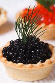 Tartlet With Black Sturgeon Caviar And Dill Macro