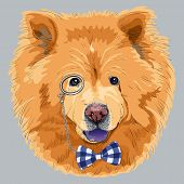 Funny Cartoon Hipster Chow-chow Dog
