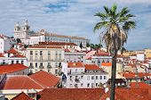 Aerial View Of Cathedral With Old Part Of Lisbon
