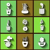 Set Of 9 Flat Icons Of Different Plants And Flowers Growing In Pots. Eps10