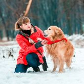 young woman play with her dog golden retriever on the snow in winter park
