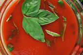 diet food : hot tomato soup with basil thyme and raw tomatoes in transparent bowl over red mat on wo