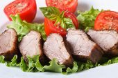 Roasted Duck Breast Meat With Vegetables Closeup  Horizontal