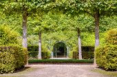 French green garden