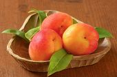 bowl of apricots with leaves on wooden table