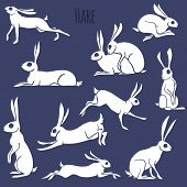 Hare silhouette set isolated on white background
