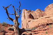 Utah - Arches National Park