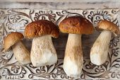 image of picking tray  - Fresh boletus mushrooms on a wooden tray - JPG
