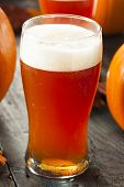 Frothy Orange Pumpkin Ale
