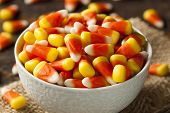 foto of corn  - Colorful Candy Corn for Halloween on a Background - JPG