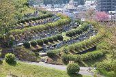 Himeji - Nagoyama Cemetery