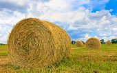 Autumn agricultural fiels with hay rolls