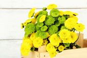 Yellow and green flowers in wooden box, on wooden background