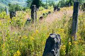 Old Abandoned Jewish Cemetery In The Ukrainian Carpathians