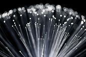 Close up of Fiber Optics