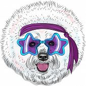 Vector Funny Cartoon Hipster Dog Bichon Star Disco