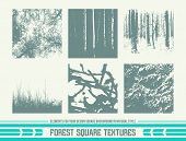 Forest Square Textures