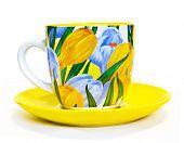 Tea Cup With Crocuses