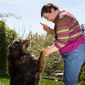 Disabled Woman Is Feeding A Dog