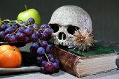 Vintage Still Life With Skull