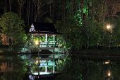 picture of vegetation  - lighted gazebo is reflected in the water the night of the lake on the background vegetation - JPG