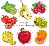 pic of mints  - Vector set of illustration with fresh bright fruits and berries - JPG