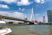 Rotterdam Harbor With Erasmus Bridge