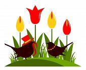 Tulips And Birds