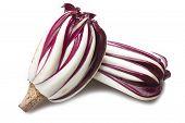 red italian radicchio chicory