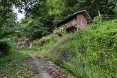 Old Wooden House On The Hill