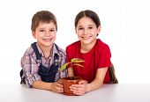 children caring for potted plant