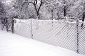 Metal Fence With Snow And Hoarfrost