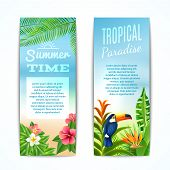Tropical Summer Banner