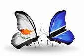 Two Butterflies With Flags On Wings As Symbol Of Relations Cyprus And Botswana