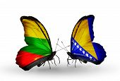 Two Butterflies With Flags On Wings As Symbol Of Relations Lithuania And Bosnia And Herzegovina
