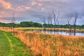 An Hdr Landscape Of A Lake In The Meadow