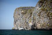 Vintage Ocean Cliff