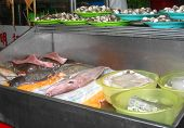 Fresh Fish On Display