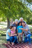 pic of extended family  - Extended family taking a selfie in the park on a sunny day - JPG