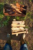 picture of firewood  - Axe and firewood lying on the ground - JPG