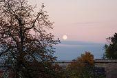 Welcome, Moon