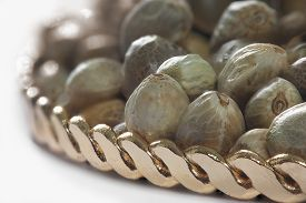 stock photo of seed bearing  - Close view of hemp seeds in a golden plate - JPG