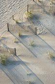 Aerial view of fences and marram grass on beach of Bald Head Island, North Carolina.