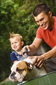 Caucasian father and toddler son giving  English Bulldog a bath outdoors.