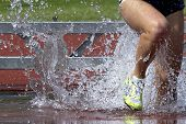 Steeplechase Run